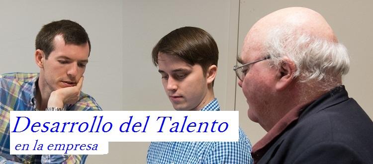 Desarrollo Talento Empresa 2017